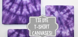 Tie-dye-t-shirt-canvases.jpg