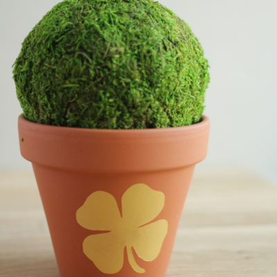 DIY Shamrock Flower Pot thumbnail