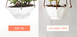 Anthropologie-Candy-Dish-Hanging-Pot-Knockoff-Comparison