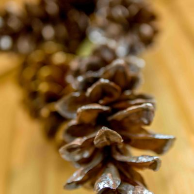 DIY Pinecone Wreath thumbnail
