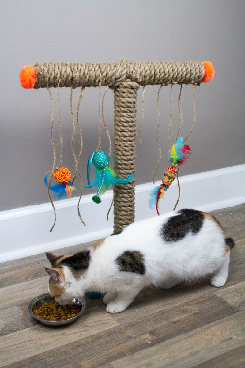 Diy Cat Scratching Post A Little Craft In Your Day