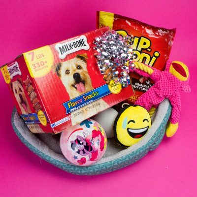 Pooch Approved Holiday Gift Set thumbnail