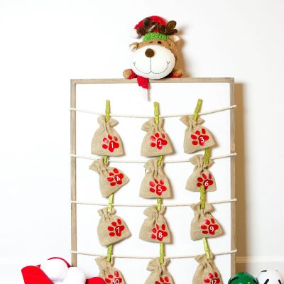 DIY Advent Calendar for Dogs thumbnail